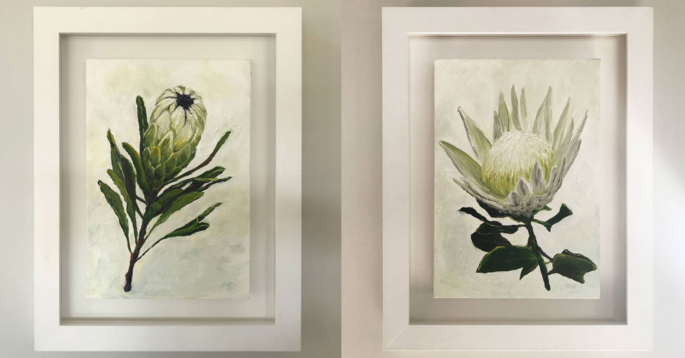 White Proteas: Oil on Canvas
